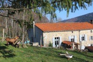 Gîte rural Loire, Monts du Forez